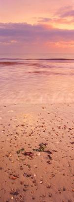 Coral sunrise by aidanmayne
