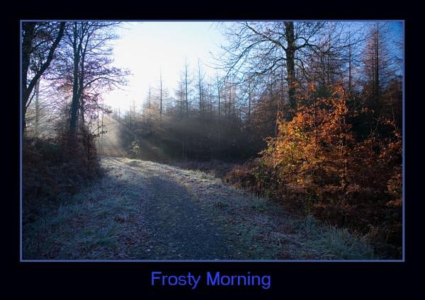 Frosty Morning by sospan