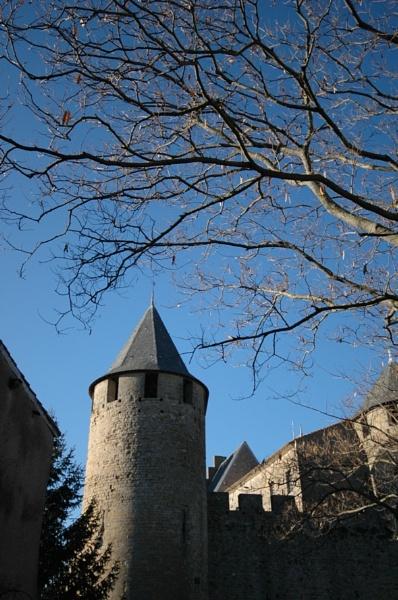 Carcassone Castle by Birdseye