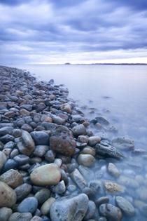 Pebbles by aidanmayne