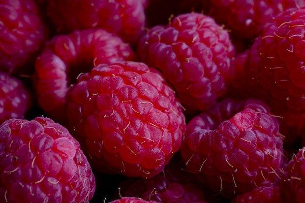 Raspberry Sundae (well, Saturday...) by janovilas