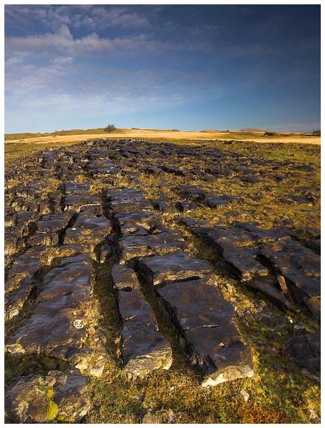 Limestone pavement by geoffrey baker