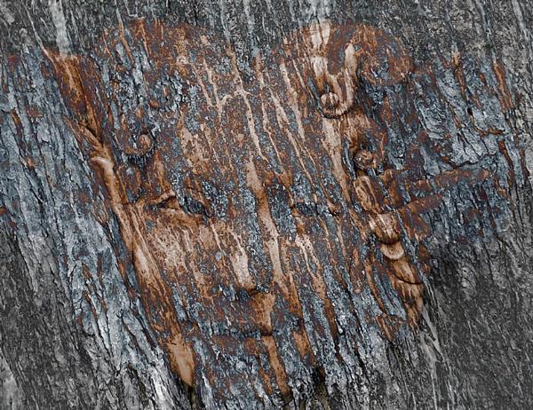 Tree Spirits by proz