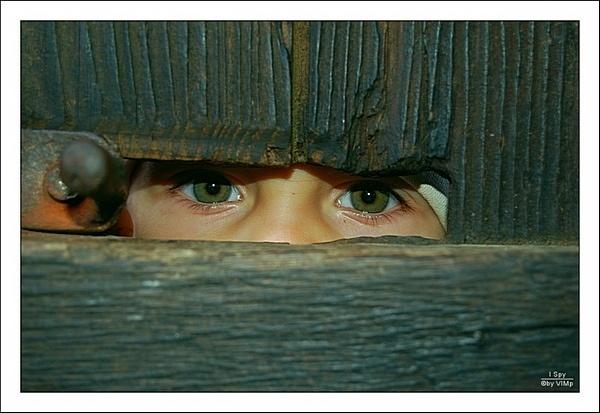 I Spy by vimp
