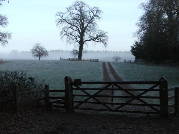 Frosty Field by GDCsparky
