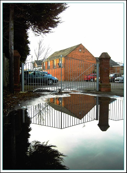 The puddle! by helenlinda