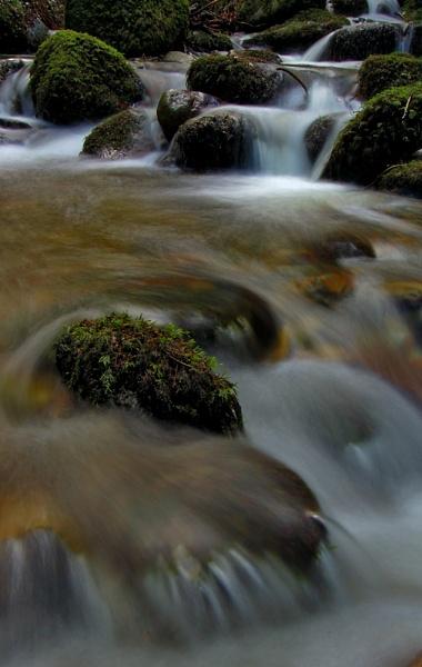 Kilbroney stream by Fisher2