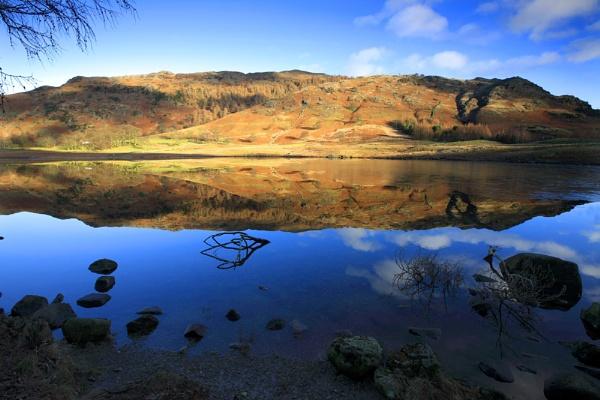 Lingmoor Fell by acaado1