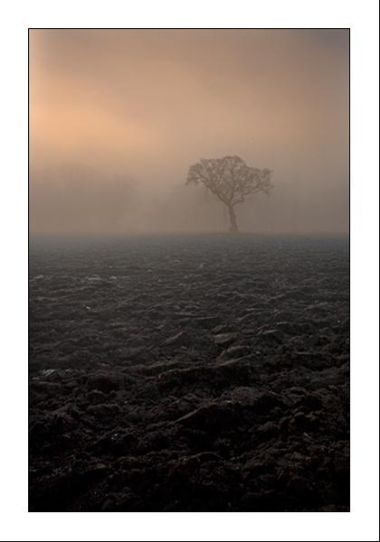 Mist by gemeit