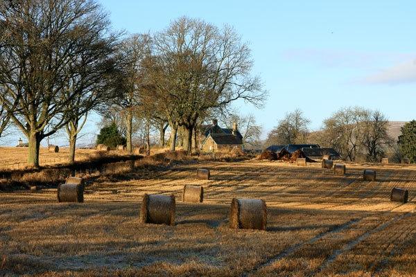 Clunie, Perthshire by Mikebr