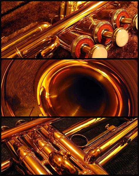 Trumpet Study by _estel_