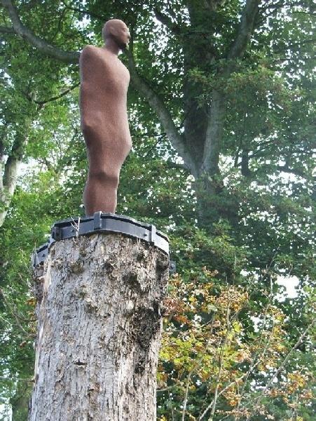 YSP man on tree by samfinister