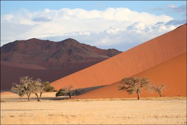 Dune 45 by chrispd101