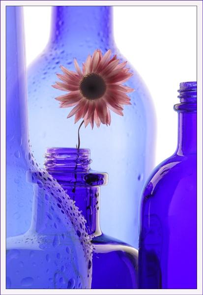 Blue bottles by BeiK