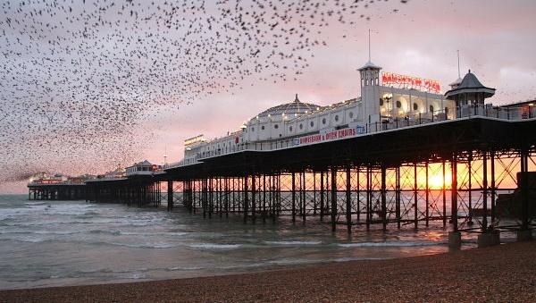 Brighton Pier by freddos