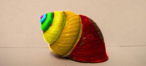 rainbow shell by pony10girl