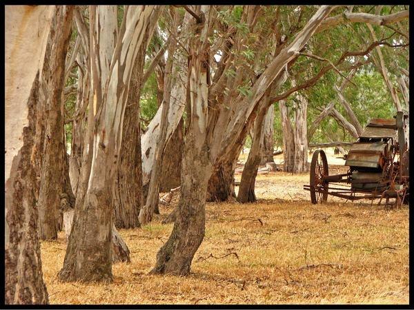 Rural Victoria by Elfix6