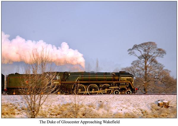 The Duke of Gloucester by IMAGESTAR