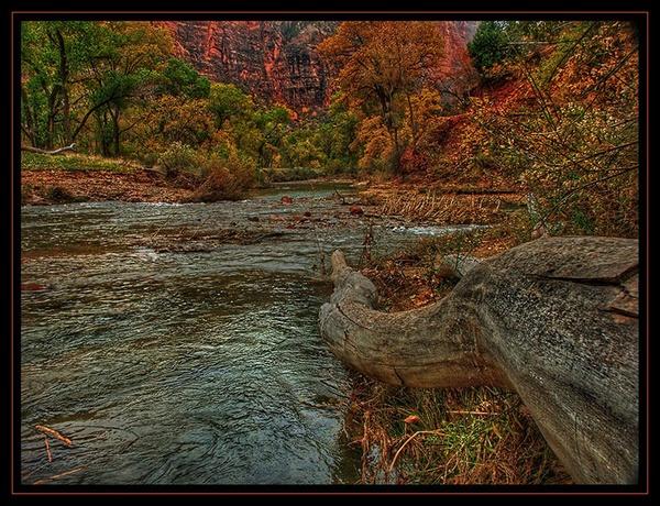 Virgin river, Zion Park by roger.east