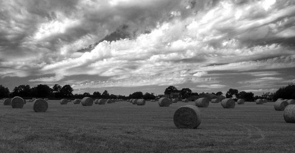 straw bales by willshot