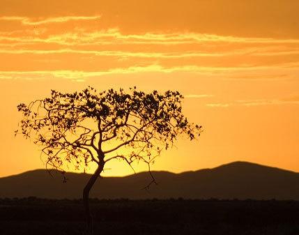 Namibia Sunset by jongordon