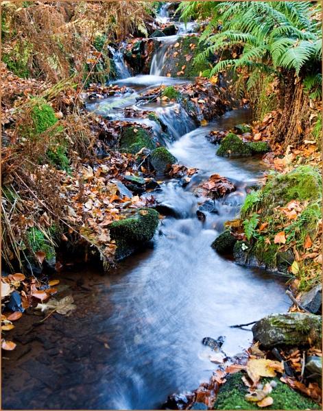 Babbling Brook by sospan
