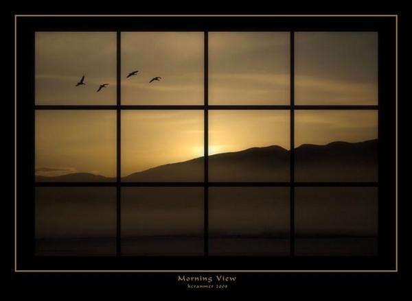 Morning View by kcranmer