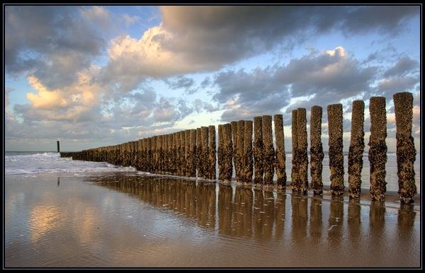 Beach Reflections by Elisabeth