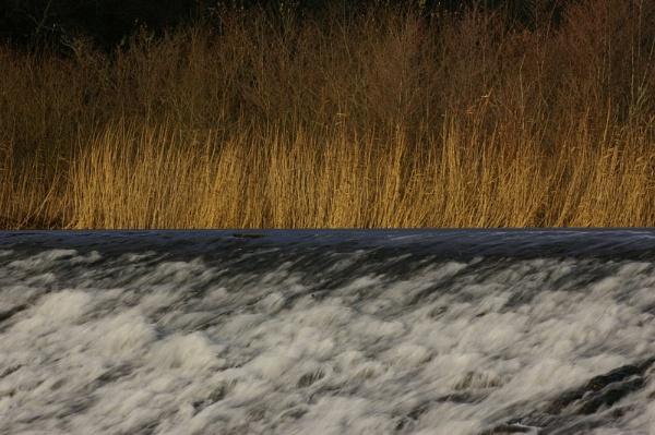 Lopwell Dam by theeyesoftheblind