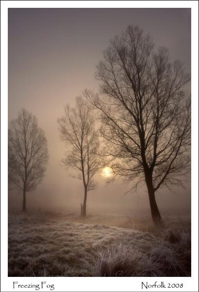Freezing Fog by KathyW