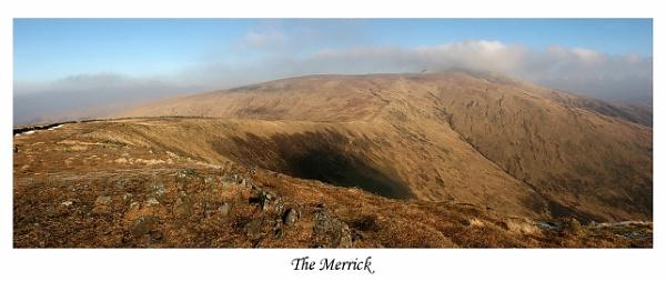 The Merrick by trekpete