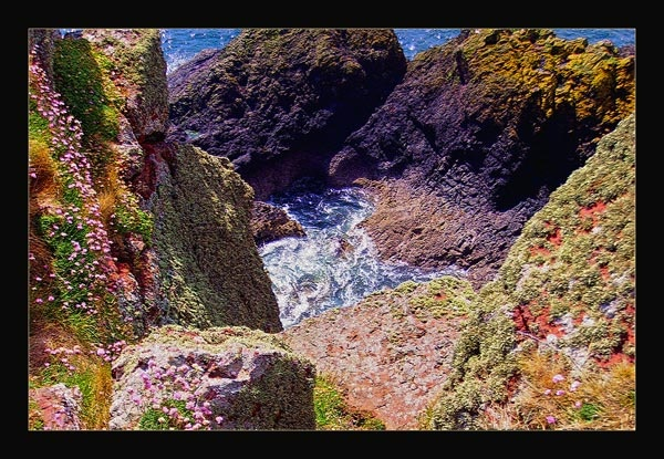 A view from a cliff by Linzie