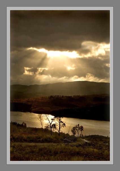Sunbeams by BevHadland