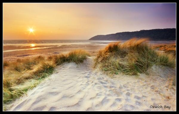 Oxwich Bay Dunes by Sheff