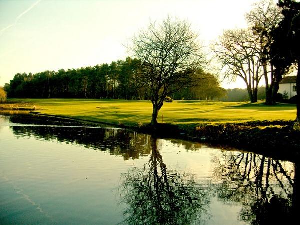 Spring Golf by TonyKerrey