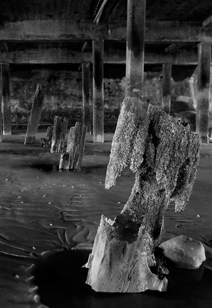Under the Pier by RoyBoy