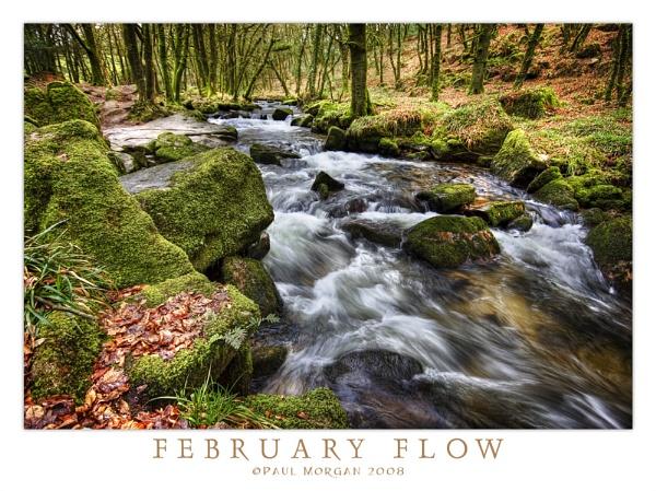 February Flow by pmorgan