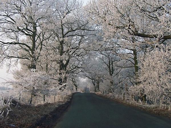 Jack Frosts Journey by thundergod