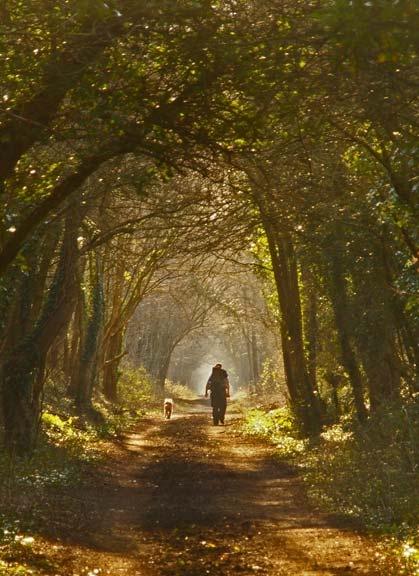 Strolling by PaulBeeTee