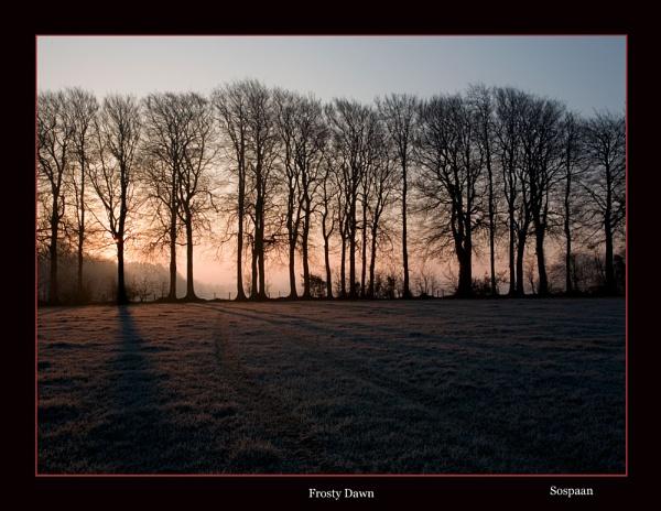 Frosty Dawn by sospan