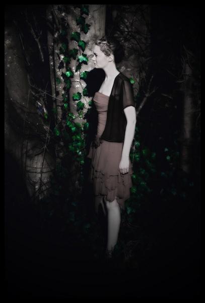Midnight in the Secret Garden by rah