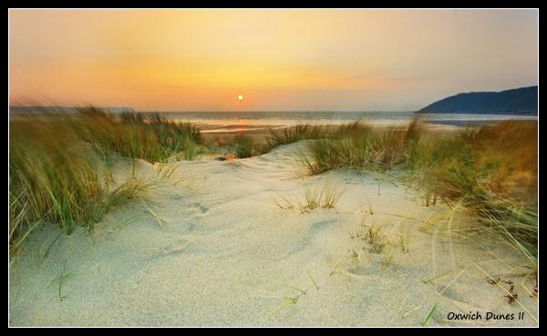 Oxwich Bay Dunes II by Sheff