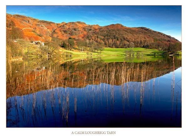 A calm LoughriggTarn by acaado1
