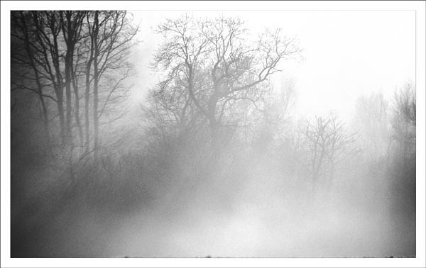 Mono dawn. by rontear