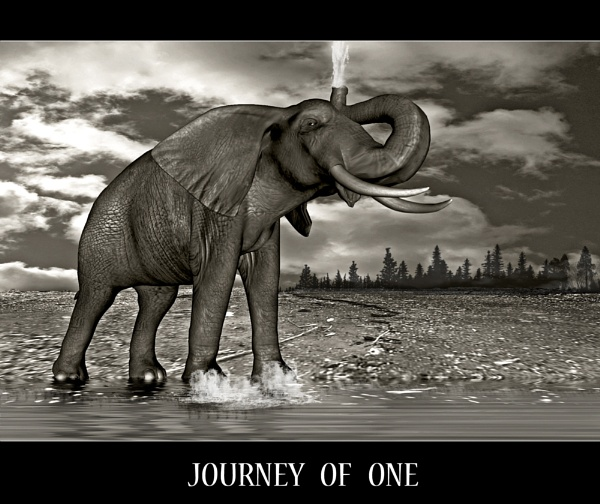 Journey of One by Photogene