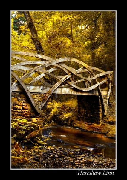 Hareshaw Linn Bridge by graeme34