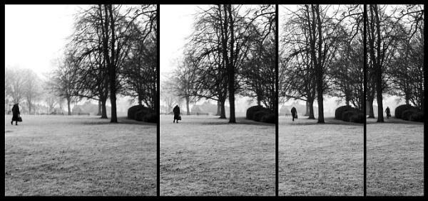 Crossing the park -2 by helenlinda