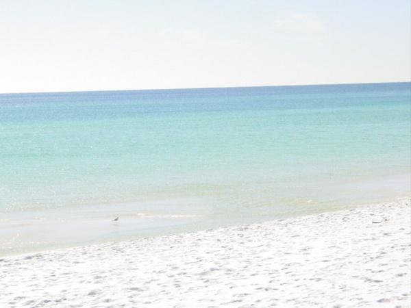 Destin, Florida by FlutrByShutrBy