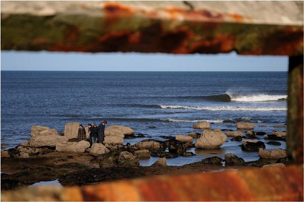 Beware Surfers by woolybill1