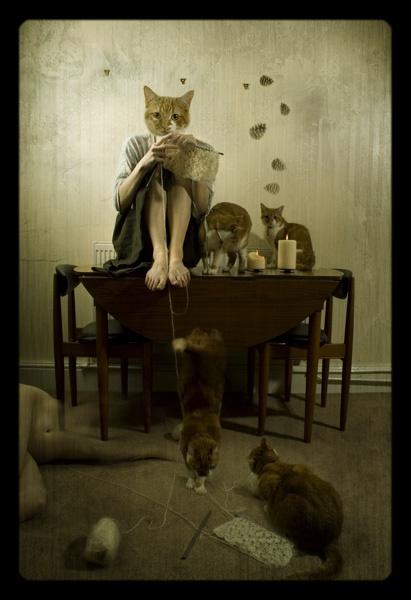Beatrix\' Revenge by TamJ